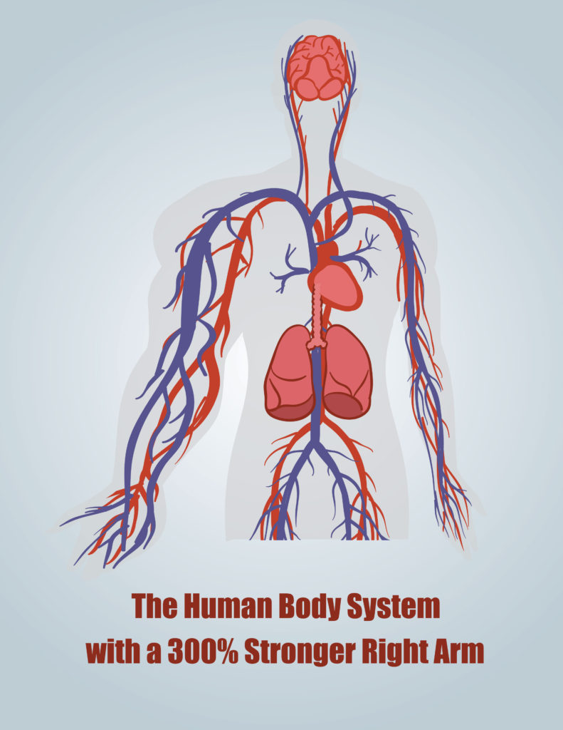 human body analogy about alignment of strategy and structure